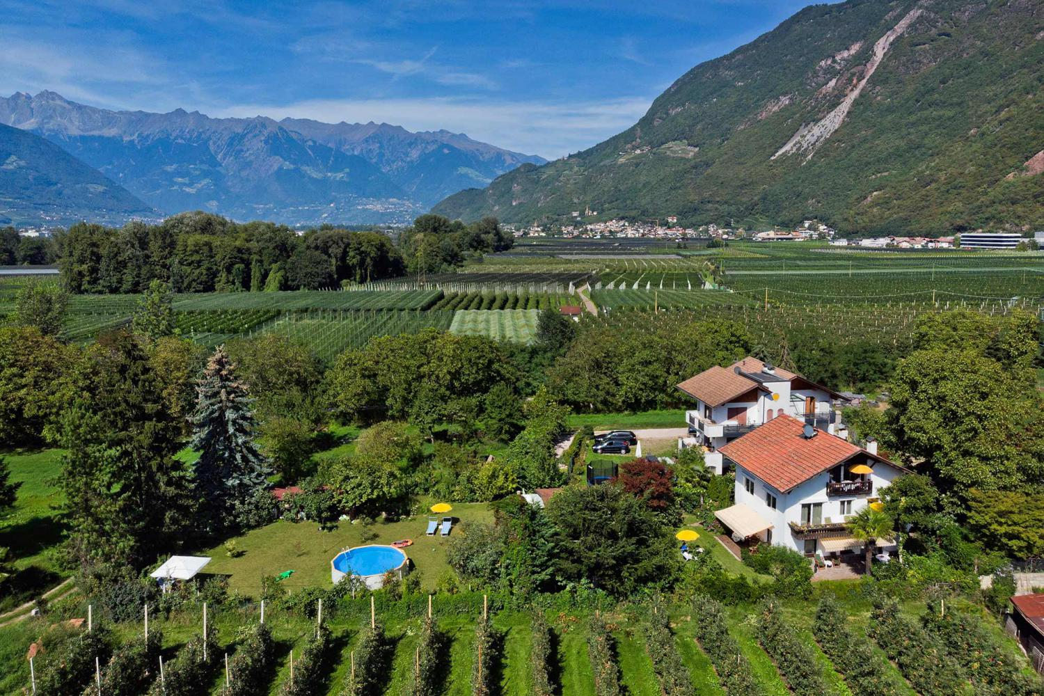 Surrounded by apple trees - Appartements Wiesengrund in Gargazzone
